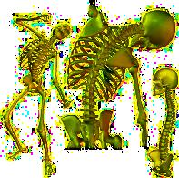skeletonav_0